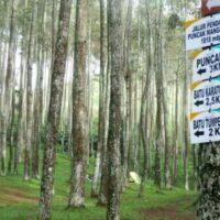 Pendakian Bersama Ke Puncak Gunung Manglayang Bandung