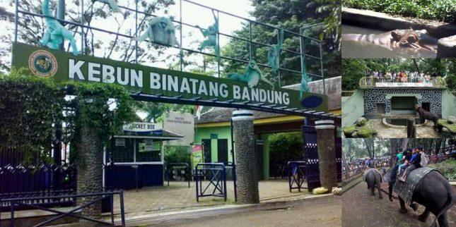 Pintu masuk kebun binatang Bandung