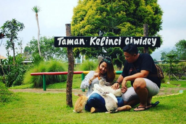 Wisata taman kelinci Bandung