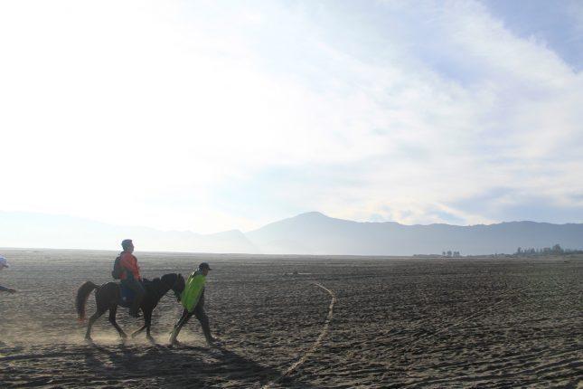 Berkuda di pasir berbisik Bromo