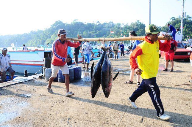 Tempat pelelangan ikan di pantai Sendang biru