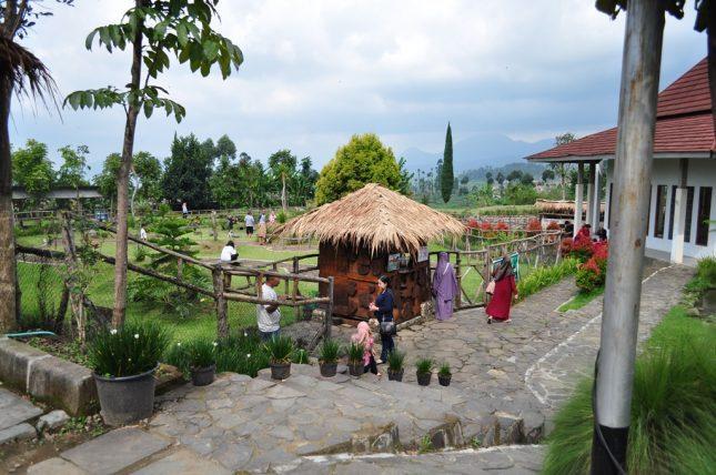 Wisata Taman Kelinci Ciwidey