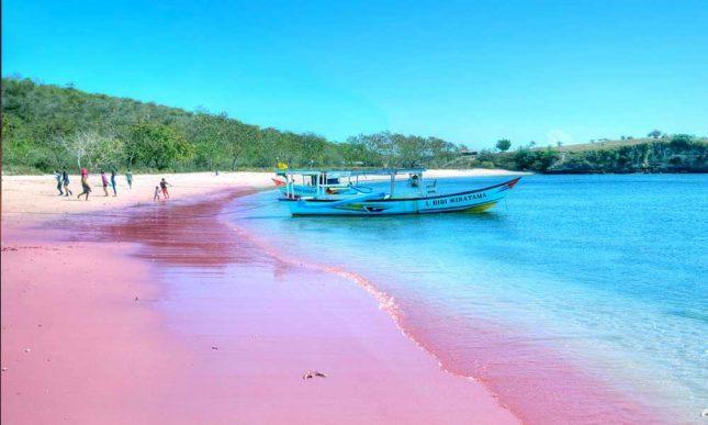 Perahu yang bersandar di pantai Pink