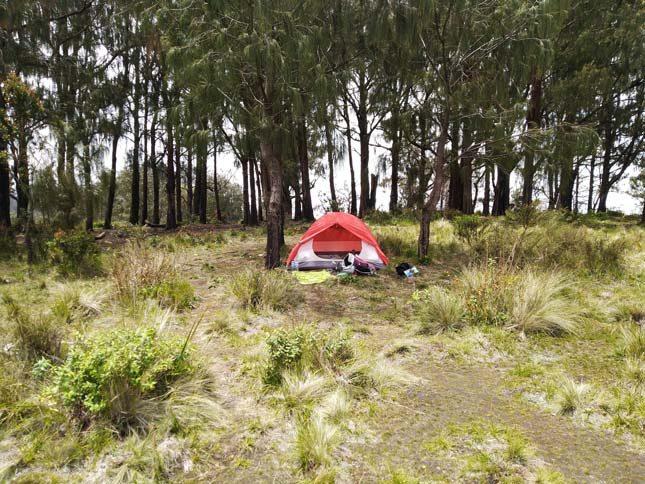Camp area gupakan menjangan