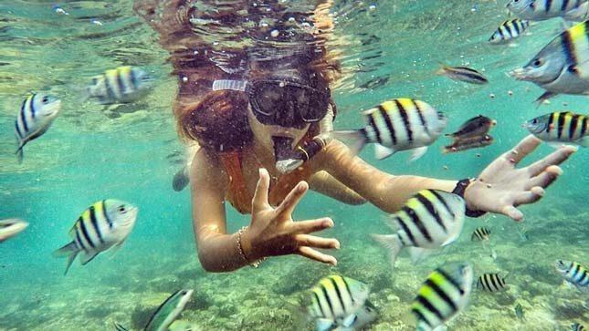 Snorkeling di pantai Nglambor Wonosari