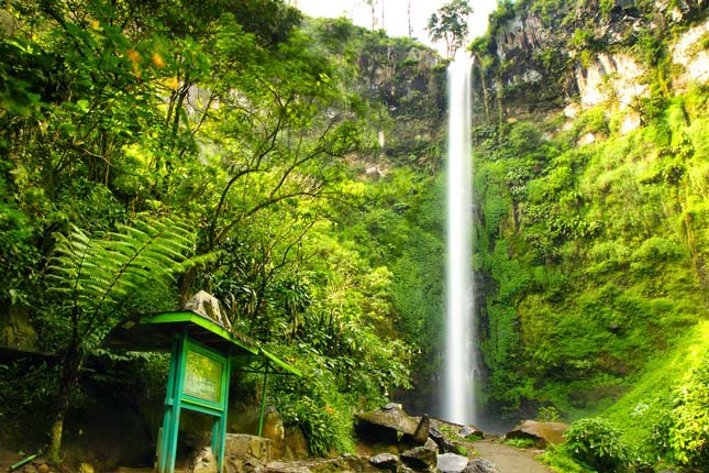 Air terjun Coban Rondo di Malang