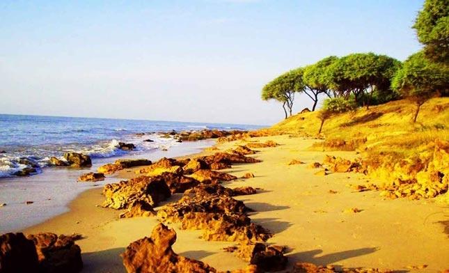 Destinasi wisata pantai Sowan Tuban