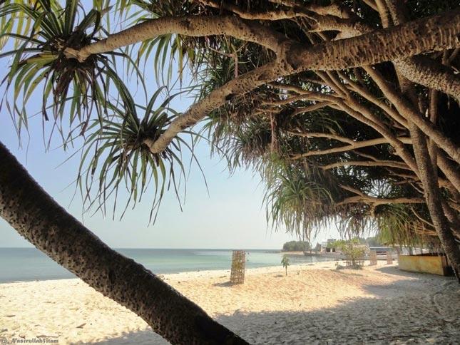 Wisata pantai Empu Rancak di Jepara