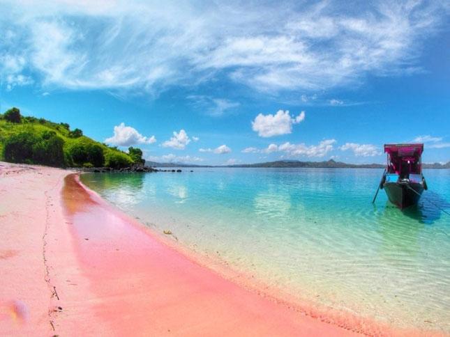 Wisata pantai pink di pulau Komodo