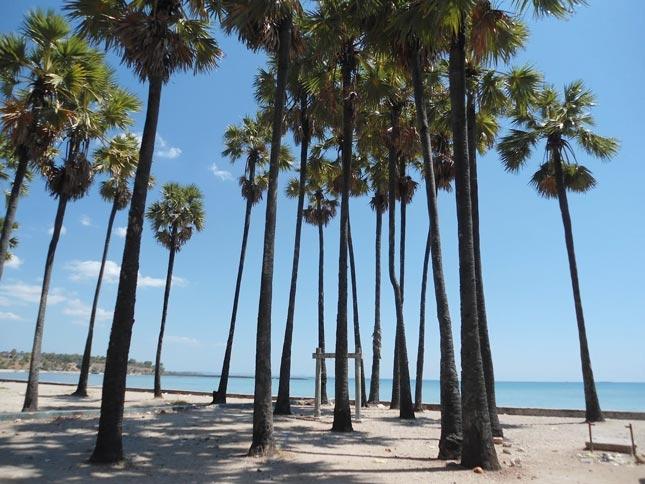 Wisata pantai Lasiana